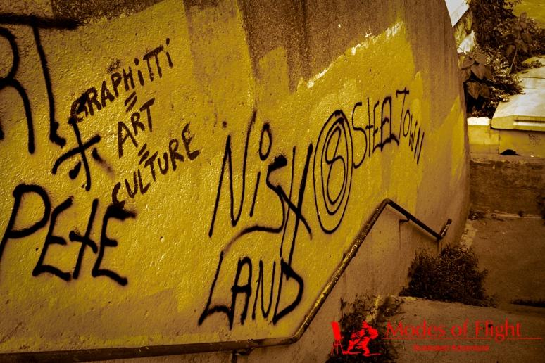 Counterculture Subculture