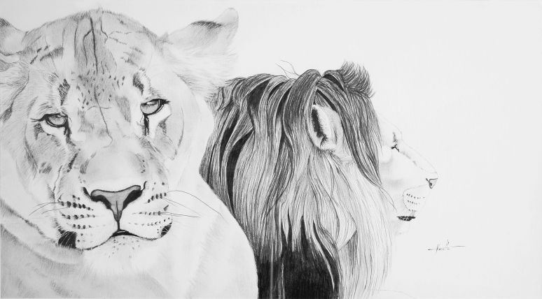 wildlife art, art exhibition
